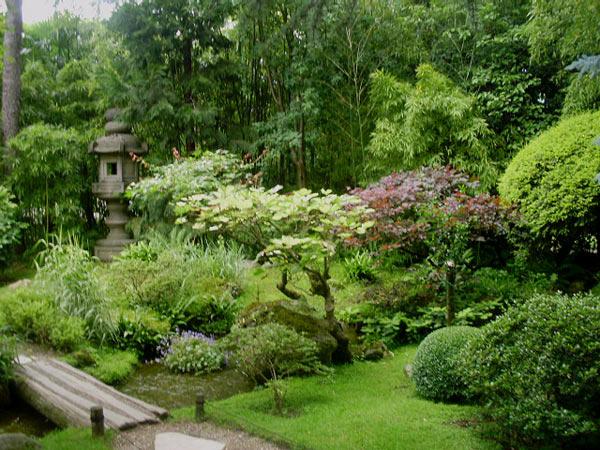Forum jardinature forum jardin jardinage nature for Albert kahn jardin japonais