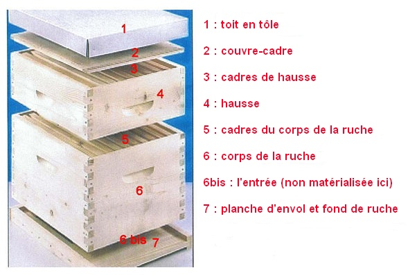 le monde des abeilles une ruche chez soi. Black Bedroom Furniture Sets. Home Design Ideas