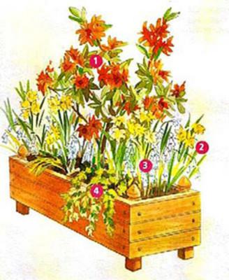 bacs et jardini res de printemps plantation des bulbes de. Black Bedroom Furniture Sets. Home Design Ideas