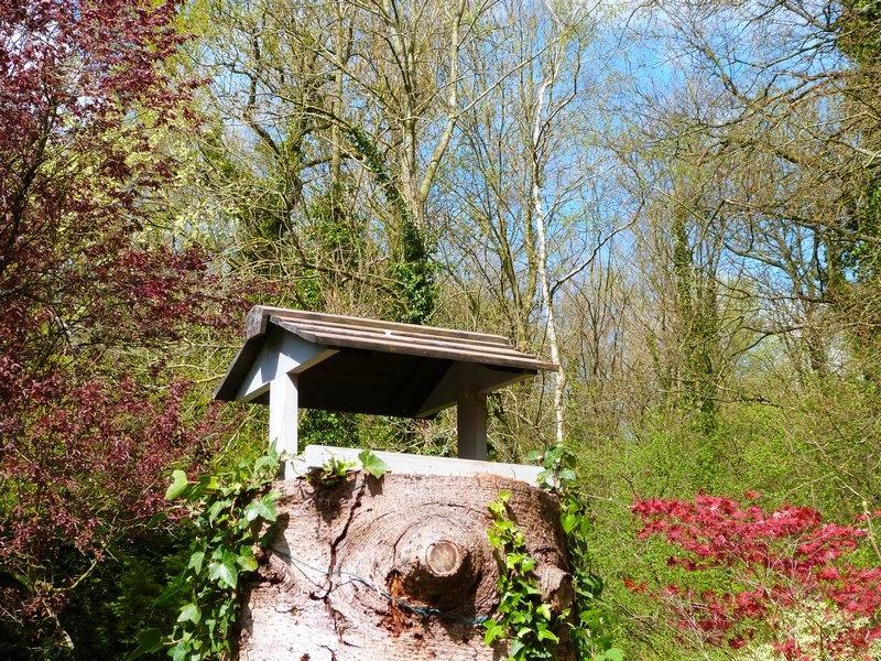 Jardin extraordinaire jardin remarquable jardin d 39 exception for Haie de jardin en belgique