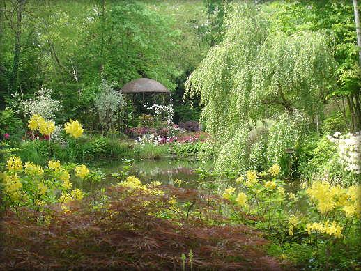http://www.jardinature.net/images/Jardin_petit_bordeaux_00.jpg