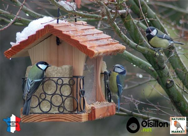 prendre soin des oiseaux toute l 39 ann e. Black Bedroom Furniture Sets. Home Design Ideas
